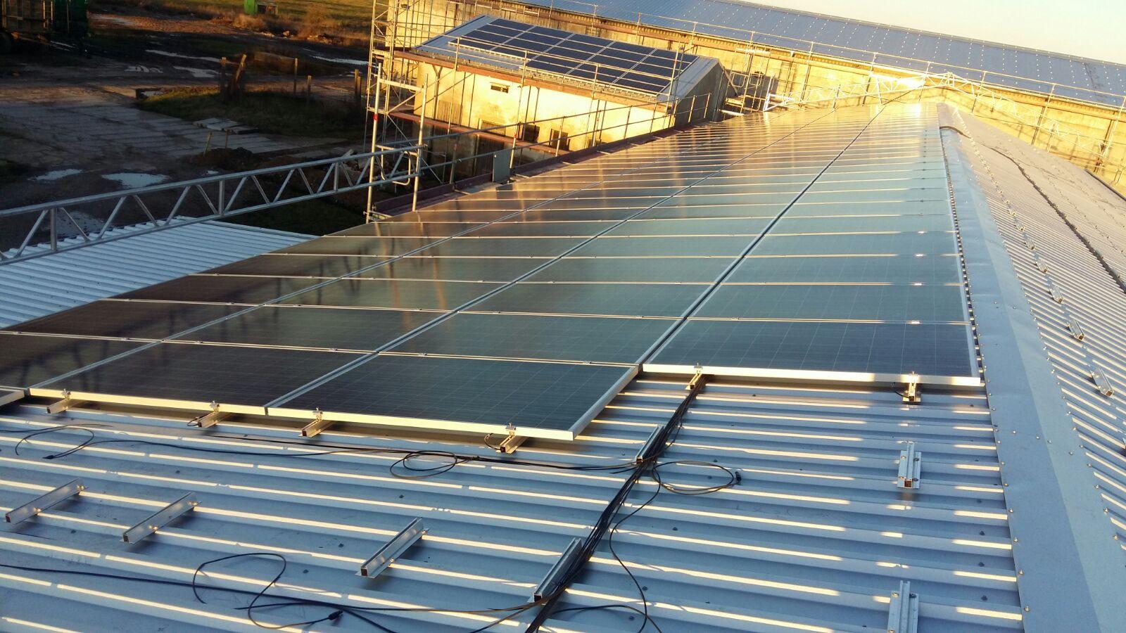 Ein neuer Wegweiser im Produktdschungel der Photovoltaik-Module