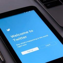 Warum Trumps Twitter Accounts dauerhaft gesperrt werden