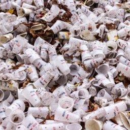 Studie von Greenpeace: Mikroplastik in Kosmetika