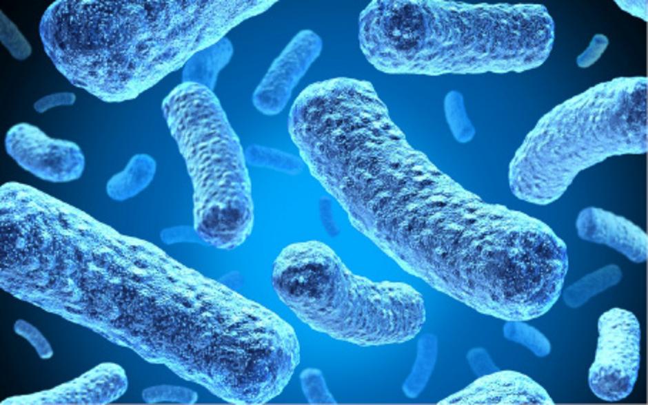 Multiresistente Keime – Bagatellerkrankung bringt den Tod